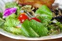 益子kinariシリーズ オードブル皿。サラダを盛ったり、ランチプレートやオードブル皿、パーティー皿、パスタ皿にちょうど良いです。一枚あると重宝します。ぜひ、贈...