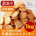 【訳あり】 1枚に乳酸菌100億個! 乳酸菌 豆乳おからクッキー ハードタイプ 1Kg(200g×5袋)【直送J】【メール便A】【WKP】