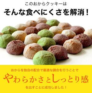 【訳あり】新食感!しっとりやわらか豆乳おからクッキー1Kg(250g×4袋)【近畿A】【宅配便B】