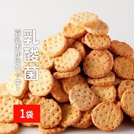 【訳あり】 1枚に乳酸菌100億個! 乳酸菌 豆乳おからクッキー ハードタイプ 500g(1袋) [訳ありスイーツ お菓子 置き換え ダイエット]【メール便A】【TSG】【TN】
