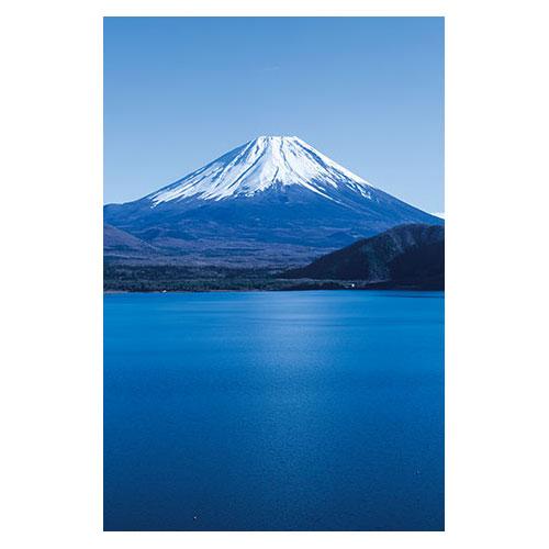 楽天市場】富士山 絵はがきの通販