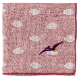 恐竜ハンカチ プテラノドン 刺繍入りガーゼハンカチ スーベニール Dinosaur handkerchief