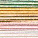 水引キット パール水引 5色×各5本入 (MZHB050)