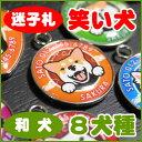 迷子札 笑い犬 和犬 秋田犬 甲斐犬 紀州犬 四国犬 北海道犬 狆 日本スピッツ 柴犬 グッズ 雑貨