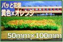 パッと置くだけで簡単 黄色×オレンジのお花畑が出来上がり!Nゲージ・鉄道模型のレイアウト・ジオラマに!!カラースポンジシーナリー 植栽住宅模型・建築模型にも
