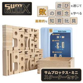 【サムブロックス SumBlox】 遊びながら数字が学べる積み木 知育玩具 日本語ガイド付き (サムブロックス・ミニ・スターターセット)