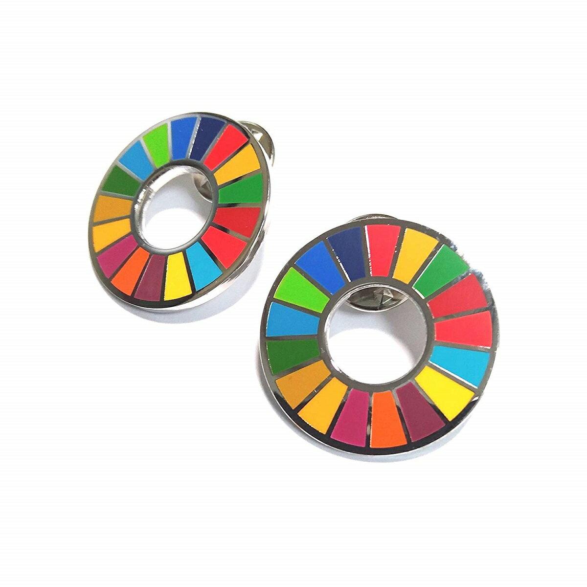 国連本部限定販売 SDGs ピンバッジ 日本未発売 UNDP 2個セット
