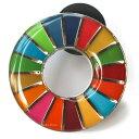 国連本部限定販売 SDGs ピンバッジ 日本未発売 UNDP (丸みタイプ1個)