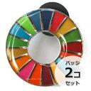 国連本部限定販売 SDGs ピンバッジ 日本未発売 UNDP (丸みタイプ2個)
