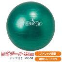 【バランスボール】 ヨガボール55cm (ポンプ付) IMC-58 【 バランスボール ジムボール エクササイズボール フィット…