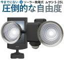 【53%引き】センサーライト ムサシ RITEX 1.3W×2灯 フリーアーム式 LEDソーラーセンサーライト (S-25L) LED ソーラ…
