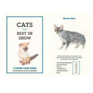 【 メール便 】 カード 猫 好き 猫カード 海外 デザイン おしゃれ cats cards キャットカード ゲーム 洋書 かわいい プレゼント 黒猫 コレクション / WakuWaku