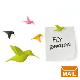 【 メール便 】マグネット フック かわいい おしゃれ 磁石 かわいい 強力 ハミングバード 【 QUALY / クオーリー 】 Humming bird Message インテリア おもしろ文具 / WakuWaku