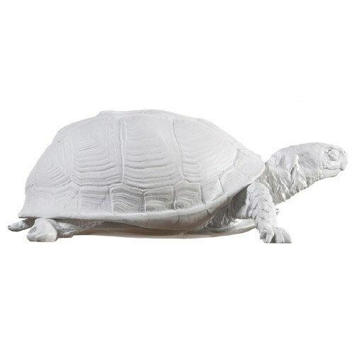 ( 送料無料 ) 小物入れ アクセサリー ボックス box 亀 タートルボックス 【 AREAWARE / エリアウエア 】Reality Box Turtle Box インテリア オブジェ タートル ホワイト / WakuWaku