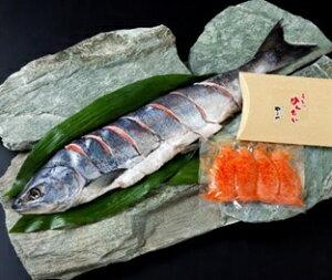 北海道産 新巻鮭(片身)とやまや明太子【送料無料】 お歳暮 お中元 ギフト 海鮮 サーモン 内祝い 高級食材 贈り物 グルメ 母の日 父の日 誕生日祝い 還暦祝い 結婚祝い 快気祝い プレゼント