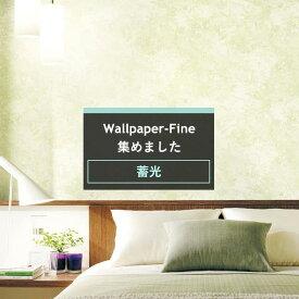 壁紙 クロス のり付き サンゲツ sangetsu FINE ファイン 壁紙 クロス wallpaper 簡単 リフォーム DIY 張替 バックペーパー/マイナスイオン《約5日後出荷》