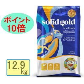 ソリッドゴールド・ミレニア 12.9kg 【正規品】