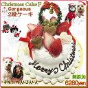 犬用の クリスマス ケーキ ゴージャス 2段ケーキ 無添加 馬肉とお野菜生地 アレルギー体質の愛犬も 豪華 Xmas cake は…