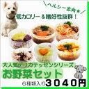 犬猫用のごはん トッピング お野菜&お肉セット 6種類 ドッグ フード ごちそう 手作り お得 贈り物 プレゼント 無添加 …