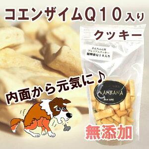 犬 おやつ 無添加 プレミアム コエンザイム Q10 クッキー 人気 プロテイン入り 国産 手作り 補酵素 ギフト 帝塚山 WANBANA