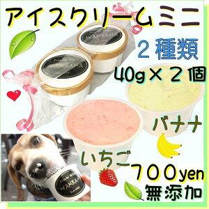 犬のアイスクリーム イチゴ馬肉チップとバナナ馬肉チップの2種類(ミニサイズ40g)セット 無添加 小型犬用Sサイズ 暑い。熱中症対策 食欲不振 夏バテ 体温調節 ひんやり 冷たい 贈り物 ギ