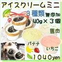 犬のアイスクリーム イチゴ馬肉チップとバナナ馬肉チップと馬肉チップの3種類(ミニサイズ40g)セット 無添加 小型犬…