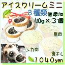 犬のアイスクリーム 馬肉チップと鹿肉チップと煮干しクリームの3種類(ミニサイズ40g)セット 無添加 小型犬用Sサイズ…