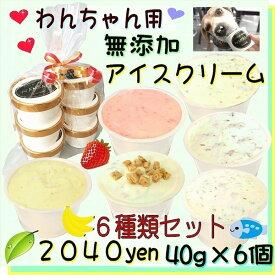 犬のアイスクリーム 6種類ミニサイズ40gセット (馬肉・煮干・いちご・バナナ・鹿肉・クッキークリーム)無添加 小型犬用Sサイズ 暑い。熱中症対策 食欲不振 夏バテ 体温調節 ひんやり 冷たい 贈り物 ギフト 贈り物 プレゼント アレルギー対応 6000円以上送料無料 ワンバナ