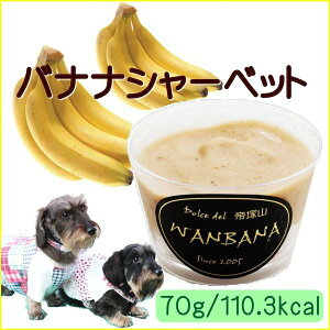 犬のアイス バナナシャーベット 70g 無添加  暑い 熱中症対策 食欲不振 夏バテ 体温調節 フルーツ 果物 ひんやり 冷たい 贈り物 ギフト プレゼント アレルギー対応 6600円以上送料無料 ワンバ