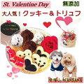 【犬もバレンタイン】愛犬にもバレンタインチョコをあげたい。ワンちゃん用のおすすめスイーツをおしえて。