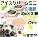 犬のアイスクリーム イチゴ馬肉チップとバナナ馬肉チップの2種類(ミニサイズ40g)セット 無添加 小型犬用Sサイズ 暑…