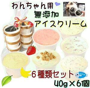 犬のアイスクリーム 6種類ミニサイズ40gセット (馬肉・煮干・いちご・バナナ・鹿肉・クッキークリーム)無添加 小型犬用Sサイズ 暑い。熱中症対策 食欲不振 夏バテ 体温調節 ひんやり 冷