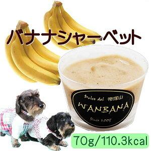 犬のアイス バナナシャーベット 70g 無添加 暑い 熱中症対策 食欲不振 夏バテ 体温調節 フルーツ 果物 ひんやり 冷たい 贈り物 ギフト プレゼント アレルギー対応 6600円以上送料無料 ワンバナ