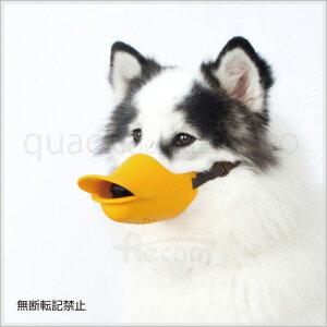 【送料無料】OPPOオッポquackclosedクァッククローズドLLサイズオレンジ