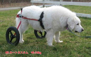 K-9カスタム車椅子(2輪) 体重40.1〜50kg用 ペット 介護用品【送料無料】 老犬 高齢犬 わんケア 【犬用車イス】【犬用車椅子】ペットグッズ 犬用カート 歩行器
