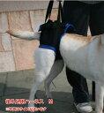 歩行補助ハーネス(後足用) M(胴周り49-63cm)介護用 【ウォークアバウト】 ペット 介護用品 老犬 高齢犬 わんケア 【犬用介護用品】ペ…