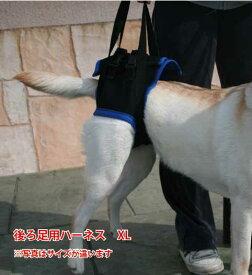 歩行補助ハーネス(後足用) XL(胴周り74-90cm) 【ウォークアバウト】 ペット 介護用品【送料無料】 老犬 高齢犬 わんケア 【大型犬用介護用品】ペットグッズ 後肢 後脚   02P03Dec16