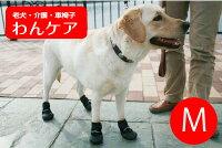ウォーカーブーツ(保護ブーツ)1ペアM【ペット用介護用品】