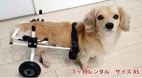 K9カート[スタンダード]後脚サポートXS・猫(5kg未満)用【ペット用介護用品】