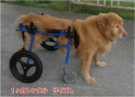 【1カ月レンタル】4輪の犬の車椅子 K9カートスタンダード L(18〜30kg)用 ラブラドール シェパード バーニーズ【介護用品】 わんケア 犬用 車椅子 車いす カート【大型犬用車椅子】 バギー 後肢 後足 歩行器  犬  レンタル 歩行 補助 ペット