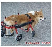 4輪の犬の車椅子K9カートスタンダードM(11.1〜18kg)用