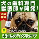 わんこの歯医者さん開発! Dr.YUJIRO デンタルジェル(夜用)※約3カ月分 3000頭以上の犬の歯石除去(歯石取り)を行…
