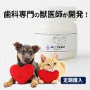 【定期購入】わんこの歯医者さん開発! Dr.YUJIRO デンタルパウダー(朝用)※約3カ月分 3000頭以上の犬の歯石除去(…