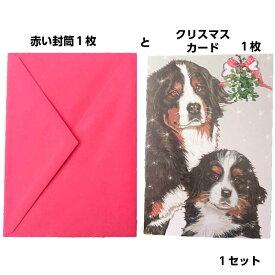 バーニーズマウンテンドッグのクリスマスカード 二つ折りで中にメッセージが書けます真っ赤な封筒もクリスマスしている犬 ペット