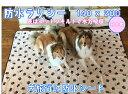 防水シーツオリジナル ラリシー ( Lサイズ)140×200cm選べる可愛い柄旅行 ペット ドライブ 防水マット お漏らし 老犬 介護 介助