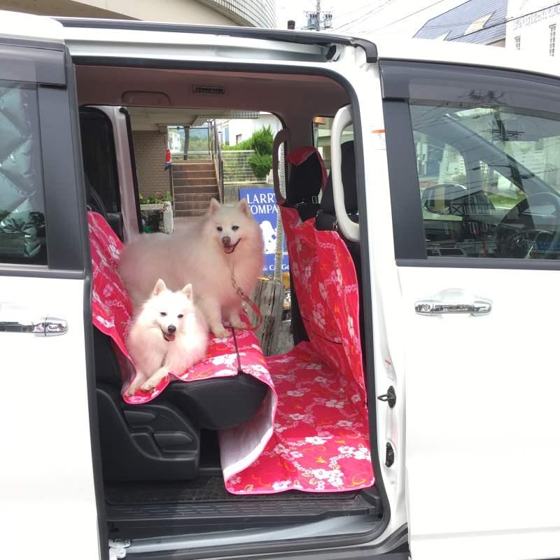 ロングタイプの防水カーシートワンボックスカー用 後部座席カバーペット 犬 車 ラリシー 防水ラリシーワンボックスカー用