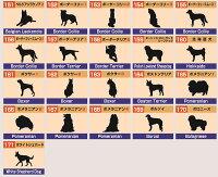 ポメラニアン/ボクサー/ボストンテリア/北海道犬/ボーダーテリア