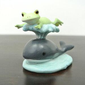 クジラに飛ばされているカエル