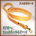 本革リード・ナチュラルN編込小中型犬用(2〜18kg)