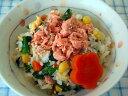 【無添加】 鮭と鶏そぼろの春ちらし【ドッグフード DOG FOOD 犬 手作りご飯 手作り食】